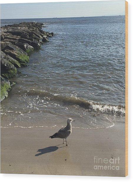 Sea Shadow Wood Print
