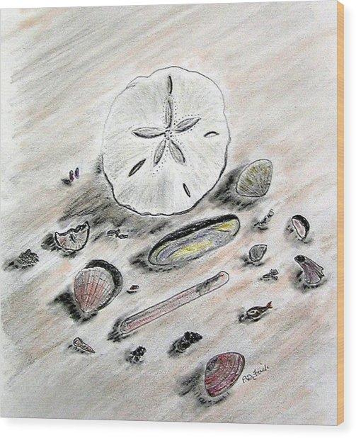 Sea Shells Wood Print by Diane Frick