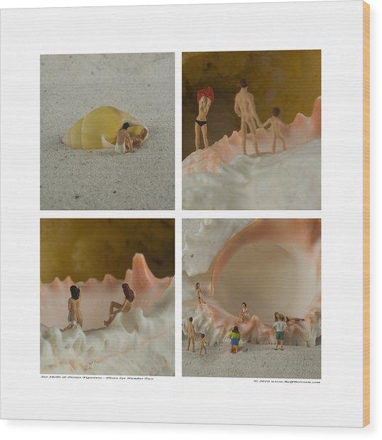 Sea Shells With Preiser Figurines Number Two Wood Print by Rolf Bertram