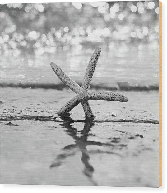 Sea Star Bw Wood Print