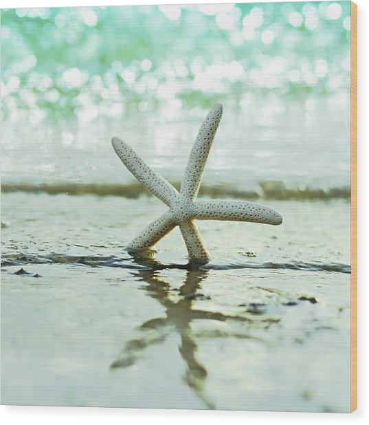 Sea Star Wood Print