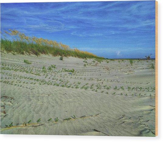 Sea Swept Wood Print