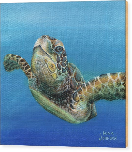 Sea Turtle 3 Of 3 Wood Print