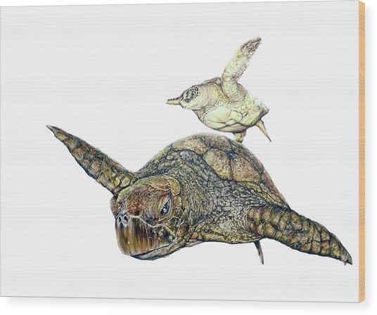 Sea Turtle 4 Wood Print