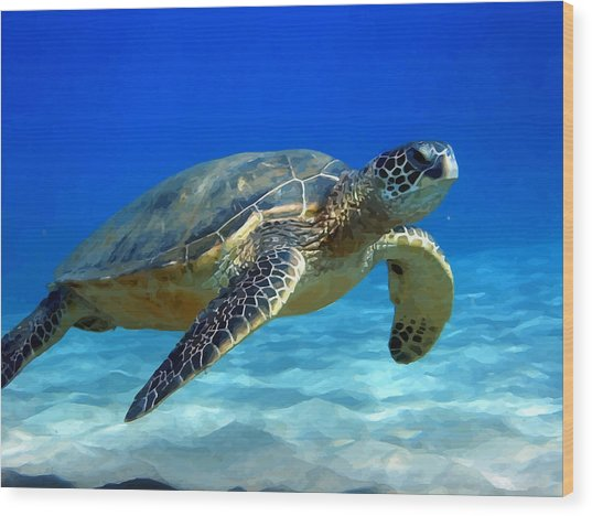 Sea Turtle Blue Wood Print by Peter Oconor