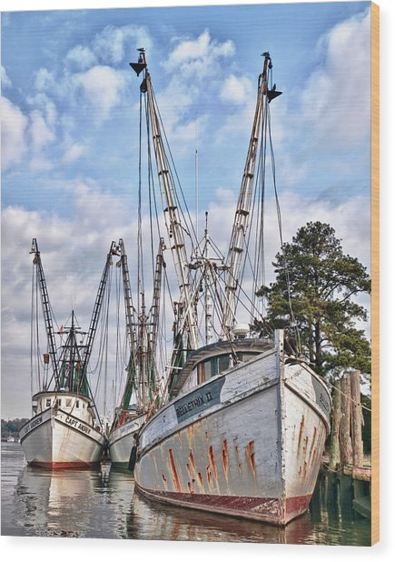 Seafood Searchers Wood Print