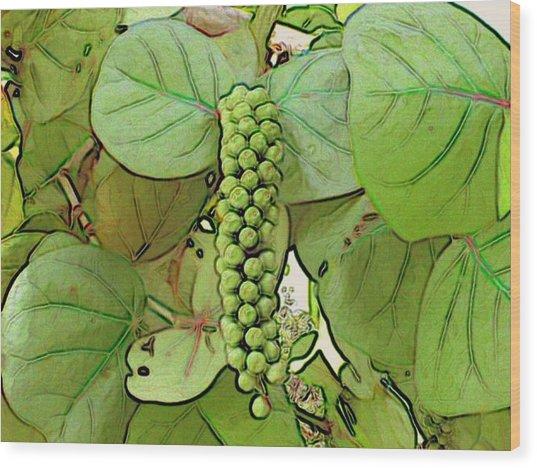 Seagrape Wood Print by George I Perez