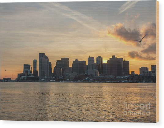 Seagull Flying At Sunset With The Skyline Of Boston On The Backg Wood Print