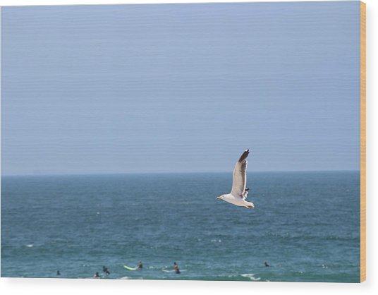Seagull Flying Over Huntington Beach Wood Print