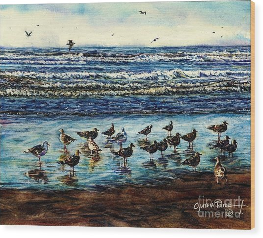 Seagull Get-together Wood Print