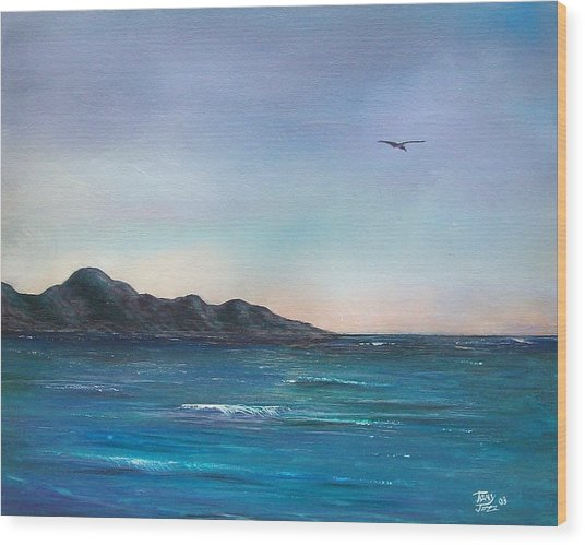 Seagull Seascape Wood Print