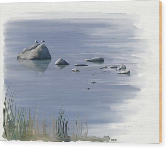 Gull Siesta Wood Print