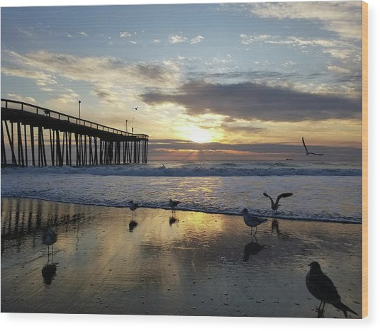 Seagulls And Salty Air Wood Print