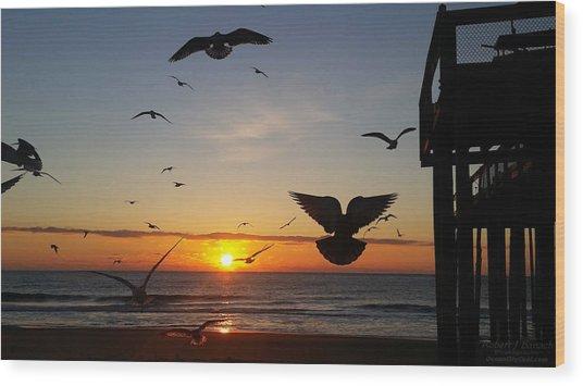 Seagulls At Sunrise Wood Print
