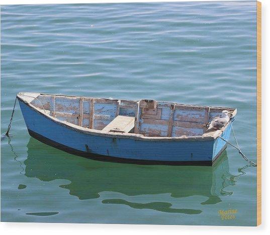 Seagull's Boat Wood Print