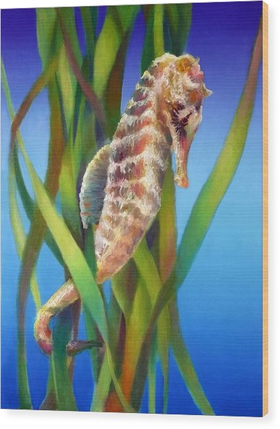 Seahorse I Among The Reeds Wood Print