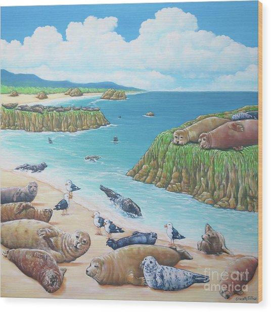 Seal Sanctuary  Wood Print