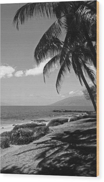 Seashore Palm Trees Wood Print