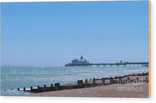 Seaside And Pier Wood Print