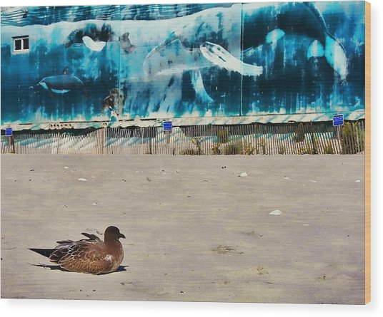 Seaside Art Gallery Wood Print by JAMART Photography