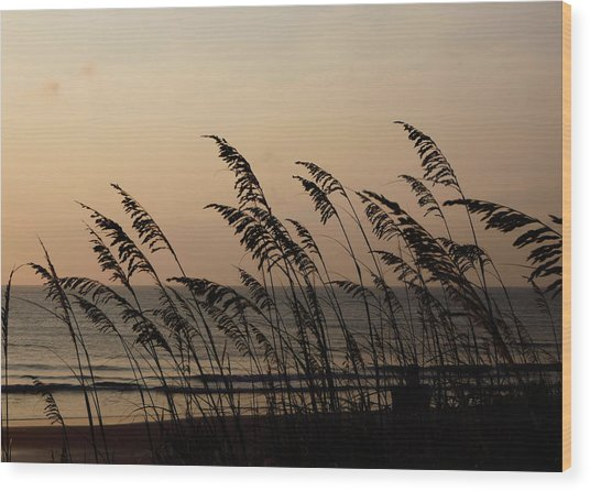Seaside Guardians Wood Print by JAMART Photography