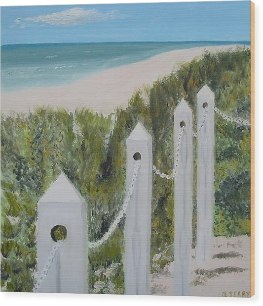 Seaside II Wood Print by John Terry