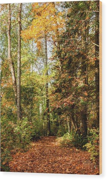 Seasonal Change Wood Print