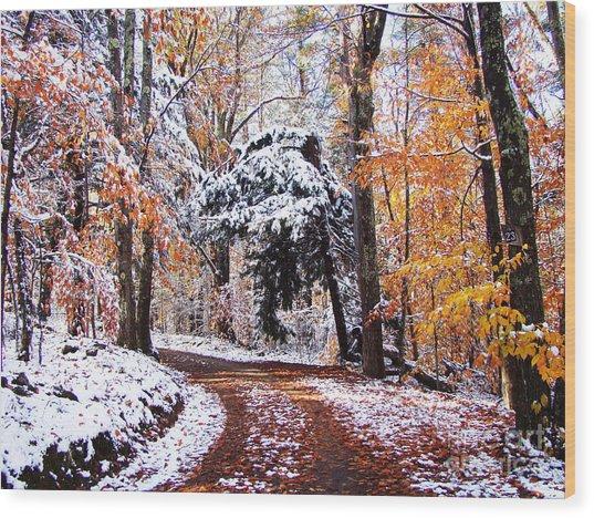 Seasons Cross Wood Print