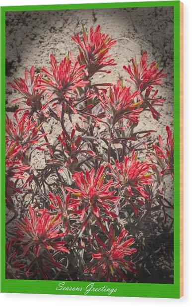 Seasons Greetings 2010 Wood Print