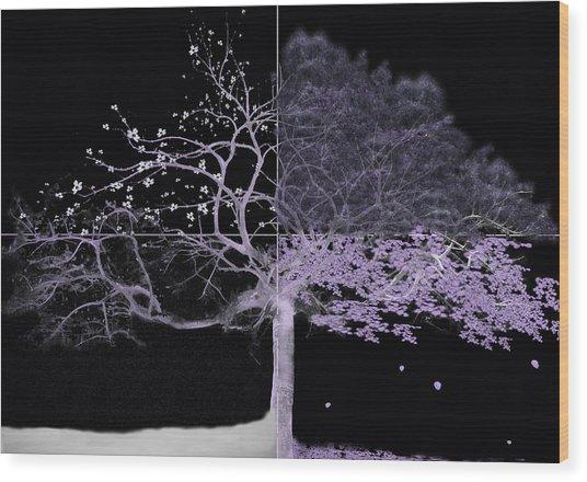 Seasons Of Change Wood Print