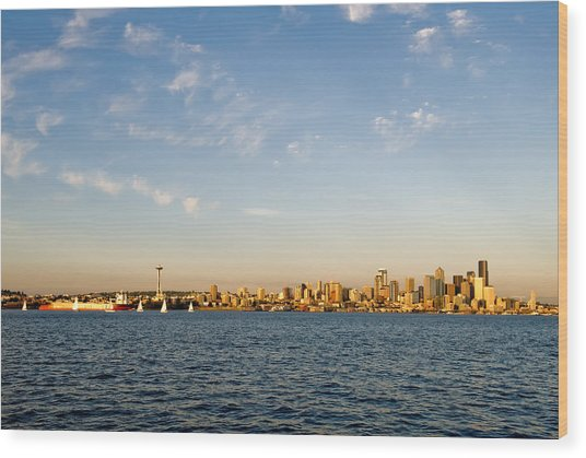 Seattle Landscape Wood Print by Tom Dowd