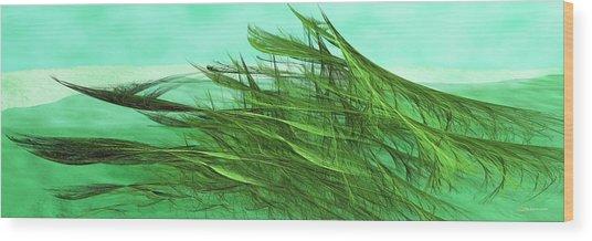 Seaweed Moves Wood Print