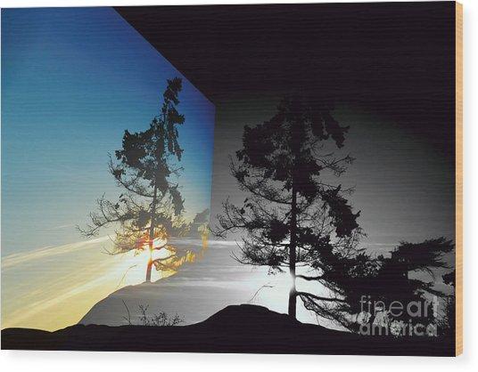 Sechelt Tree Wood Print