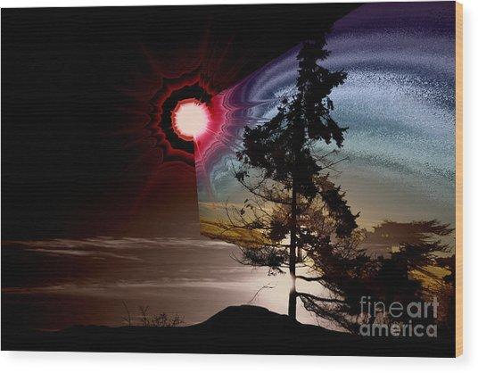Sechelt Tree Stardust Wood Print