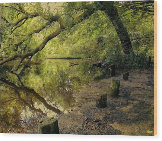 Secluded Sanctuary Wood Print