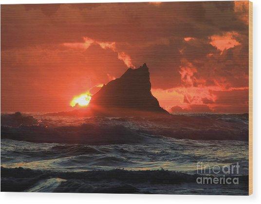 Second Beach Shark Wood Print