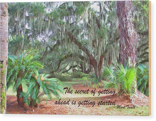 Secret Pathway Wood Print