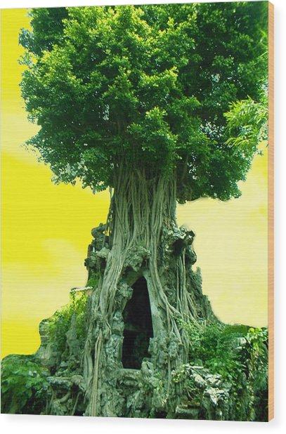 Secret Place Wood Print by Melissa Stinson-Borg