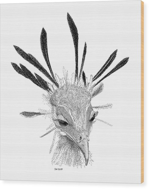 Secretary Bird Wood Print