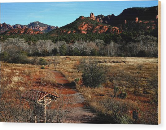 Sedona Wood Print by Jennilyn Benedicto