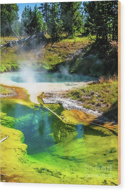 Seismograph Pool In Yellowstone Wood Print