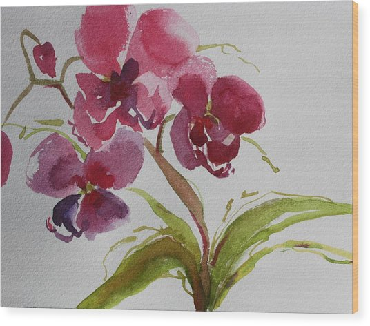 Selby Orchid II Wood Print