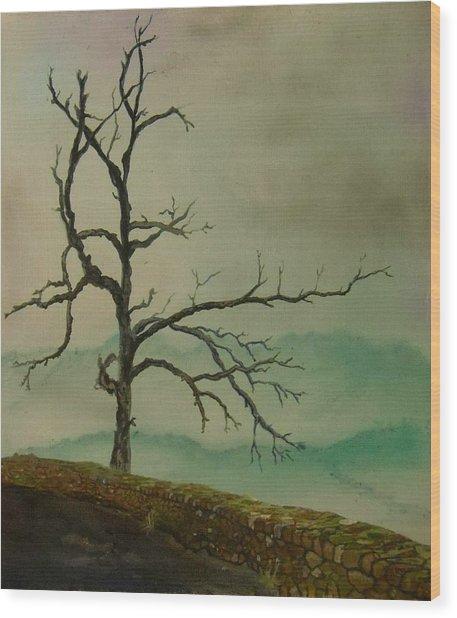 Sentinel Of The Shenandoah  Wood Print