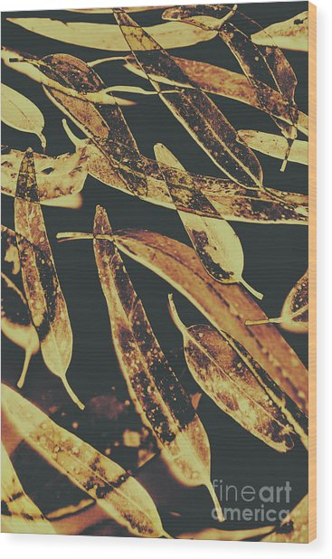 Sepia Toned Image Of Floating Eucalyptus Leaves Wood Print