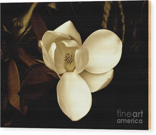 Sepia-toned Magnolia Wood Print