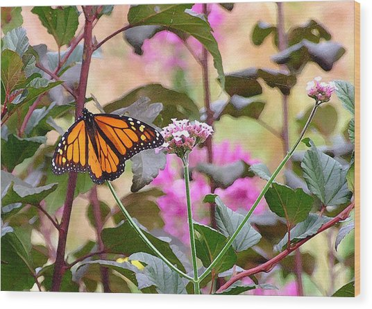 September Monarch Wood Print