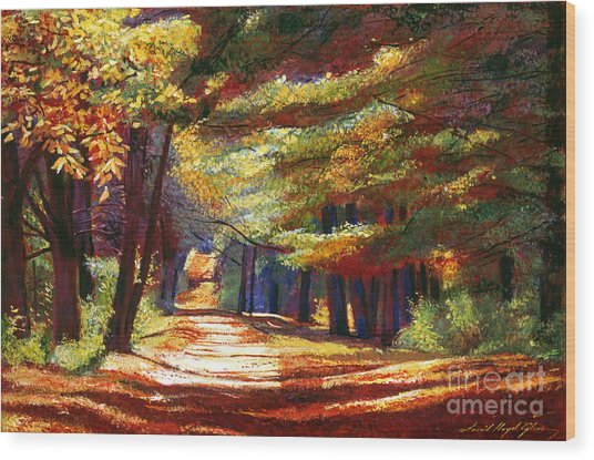 September Song Wood Print by David Lloyd Glover