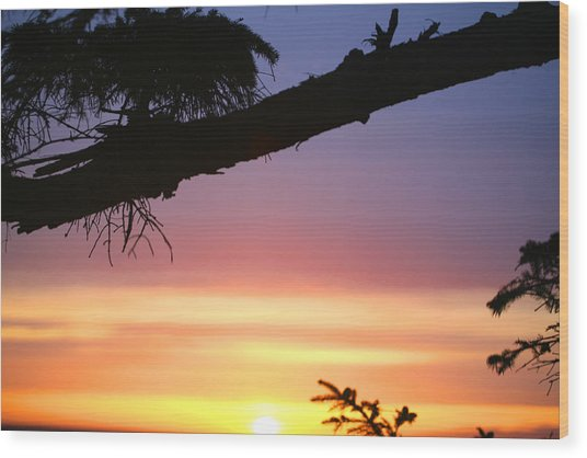 Sequim Sunset Ss 2007 Wood Print by Mary Gaines