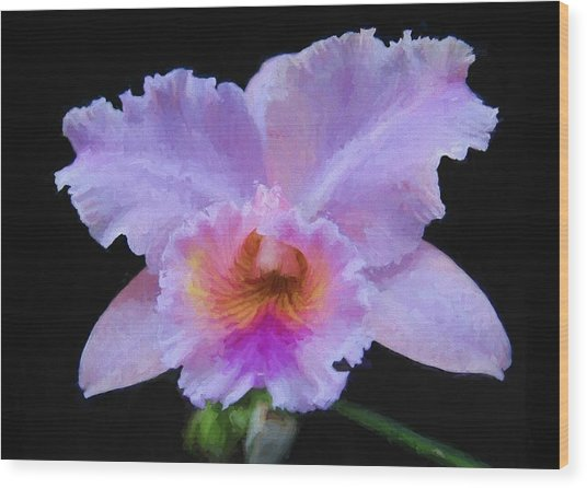 Serendipity Orchid Wood Print