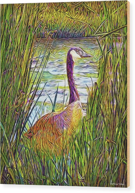 Serene Goose Dreams Wood Print
